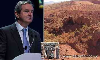 Rio Tinto chairman Simon Thompson QUITS over miner's destruction of Indigenous Juukan Gorge site