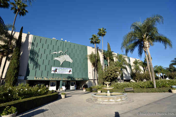 Horse Dies During Training At Los Alamitos Race Course