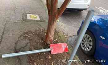 Homeowners from Sydney suburb baffled by mystery vandal who is slicing new stop signs in half