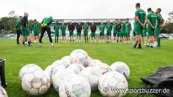 Training und kein Ende in Sicht: Chemie Leipzig hofft auf Lockerungen ab April - Sportbuzzer