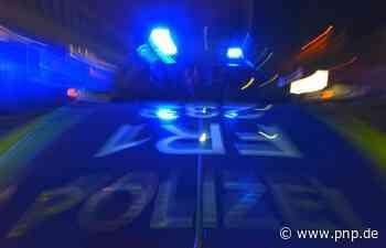 Bei Kontrolle: Männer schubsen und beleidigen Polizisten - Passauer Neue Presse