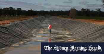Government axes scheme to tap into farmers' water for Murray Darling