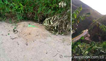 Desactivan artefacto explosivo en Bucarasica | La Opinión - La Opinión Cúcuta