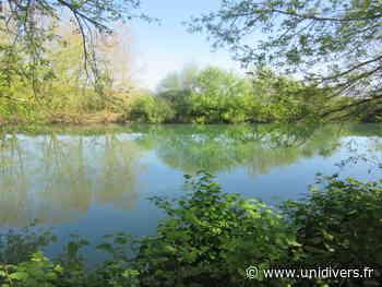 Sortie nature et patrimoine les poissons migrateurs vendredi 26 mars 2021 - Unidivers