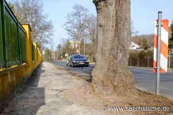 Straßenflick in Coswig - Sächsische Zeitung