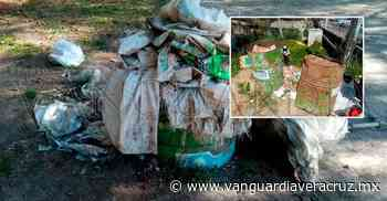 Altotonga, un muladar; limpia pública no cumple sus funciones - Vanguardia de Veracruz