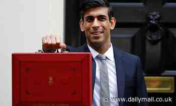BUDGET 2021 AT A GLANCE: The key points from Chancellor Rishi Sunak's speech