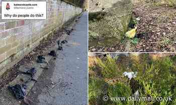 Dog walkers dump pets' waste on Queen's Balmoral estate and across UK