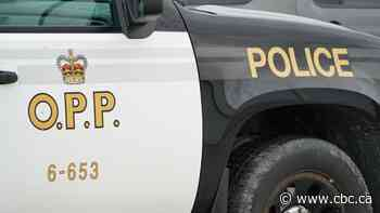 Man drove wrong way on Hwy. 401 to evade officers, OPP says