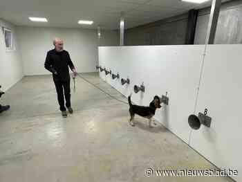 """KV Oostende werkt mee aan proefproject met honden om Covid-19 op te sporen: """"Soms acht dagen sneller dan gewone test"""""""
