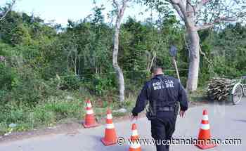 Abuelito de 80 años, cortaba leña en el monte y lo sorprende la muerte en Sucopó - Yucatán a la mano