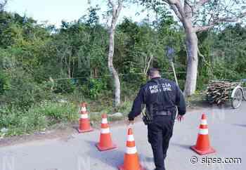 Yucatán: Abuelito de 80 años, cortaba leña en el monte y lo sorprende la muerte en Sucopó - sipse.com