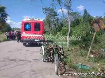 La muerte sorprende a veterano campesino de Sucopó en el monte - El Diario de Yucatán