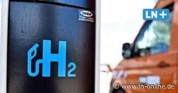 Energie durch Wasserstoff auf Fehmarn: Insel knüpft grünes Netzwerk - Lübecker Nachrichten