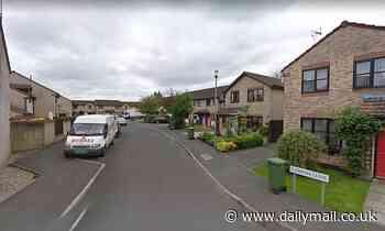 Girl, 3, dies after being hit by a van in quiet cul-de-sac in Calne, Wiltshire