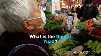 Digital yuan looks for its next frontier - CGTN America