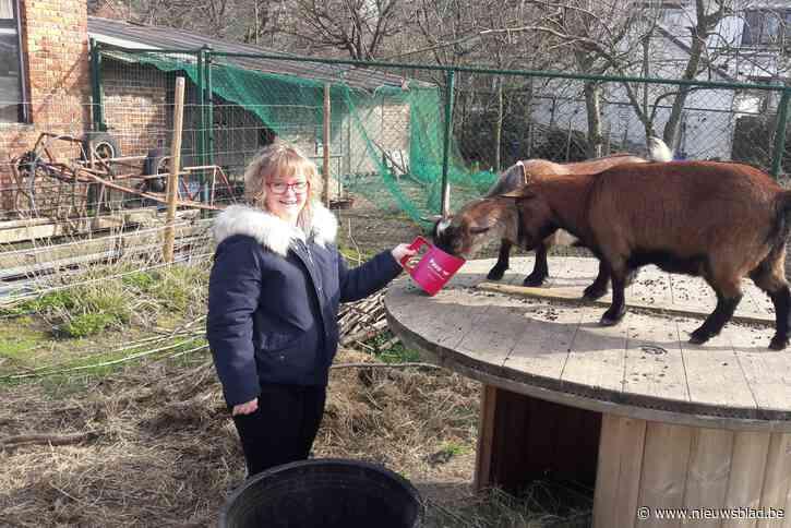Kaas en wijn moeten leefboerderij voor Hélène uit 'Down the Road' voeden