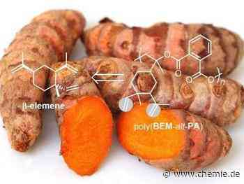 Die wachsenden Möglichkeiten von biobasierten Polymeren