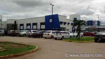 NacionalesHace 1 día MiAmbiente investiga muerte de lagarto, tras ataque de niño en Natá - Mi Diario Panamá
