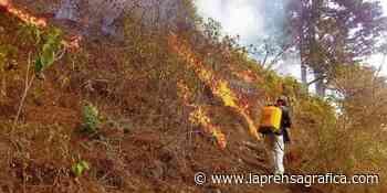 Incendio afecta La Montañona en Concepción Quezaltepeque, Chalatenango - La Prensa Grafica