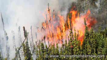 Wildfire season starts in Alberta - My Lloydminster Now