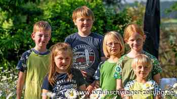 Sickter Elm-Kids wollen Bauwagen aus ökologischem Material bauen