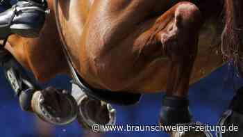 Nach Turnier in Valencia: Neue Herpes-Variante:Erstes totes Pferd in Deutschland