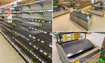 Woolworths strips shelves of fruit, vegetables and pantry items due to bee shortage