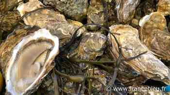 Les huîtres d'Hossegor interdites à la vente après des cas d'intoxications alimentaires - France Bleu