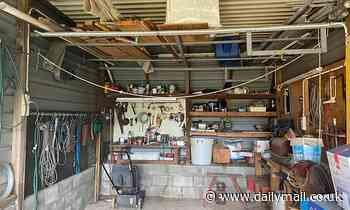 Can you sssspot the snake? Deadly coastal carpet python is hiding in this Australian garage
