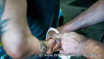 20 Festnahmen: Fahnder zerschlagen Bande von Drogenschmugglern