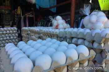 Precio del huevo alcanza los 8 córdobas en pulperías de Managua • VosTV - VosTV