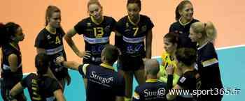 Volley - Ligue A (F/J16) : Nantes vainqueur à Venelles et de retour sur le podium - Sport365.fr