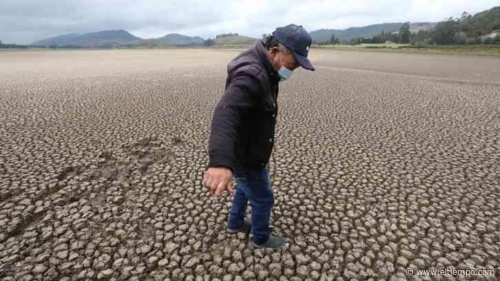 El plan de Cundinamarca para salvar la laguna de Suesca - El Tiempo