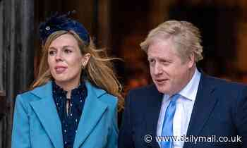 Takeaways for Boris Johnson and Carrie Symonds from UK's poshest farm shop... for £12,500