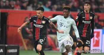Charles Aránguiz verlängert bei Bayer Leverkusen - kein Bayern-Wechsel - SPORT1