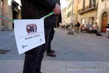Commercio, dopo il flash mob la rabbia non cala - Qui News Lucca
