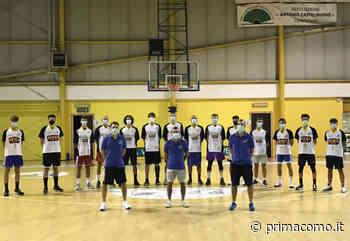 Basket C Gold domani esordio casalingo per la Virtus Cermenate contro Busnago - Prima Como