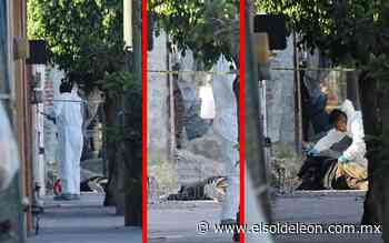 [VIDEO] Asesinan a hombre en la colonia Valle de San José - El Sol de León