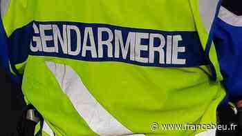 Des gendarmes de Bormes-les-Mimosas échappent à des coups de couteau - France Bleu