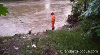 Hombre murió ahogado en Coyaima y su cuerpo fue encontrado en Ricaurte - Ondas de Ibagué