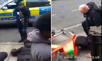 Moment police aim 'assault rifles' at group of '16-year-olds' as two are pinned to the ground