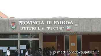 Volontari in campo per pulire Vigonza e fototrappole per i furbi - il mattino di Padova