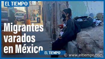 Migrantes varados en Ciudad Juárez esperan llegar a Estados Unidos - El Tiempo