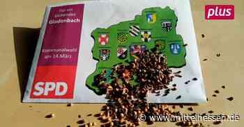 SPD Gladenbach hat das Ganze im Blick - mittelhessen.de