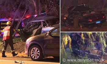 Woman dies, a teen is fighting for life and two children are in a critical condition in Sydney crash