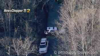 First Responders At Apparent Hillside Rescue Effort In Forward Township