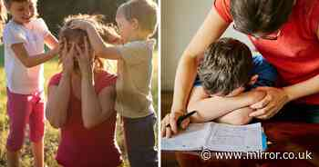 ADVERTORIAL: 'I was at breaking point' - mum's homeschooling account millions can relate to