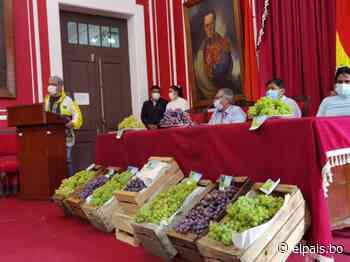 Viticultores de Tarija envían a Paraguay las primeras 1.780 cajas de uva - El País