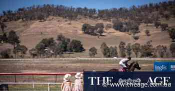 Towong races turn 150 with cracker Cup Day